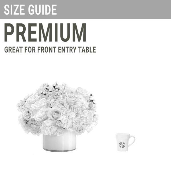 Low + Lush Premium