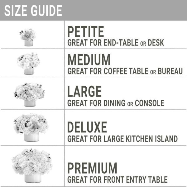 Low + Lush Size Guide